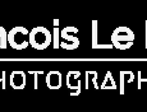 Mes photos disponibles à la vente !